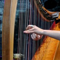 Dutch Harp Festival 201